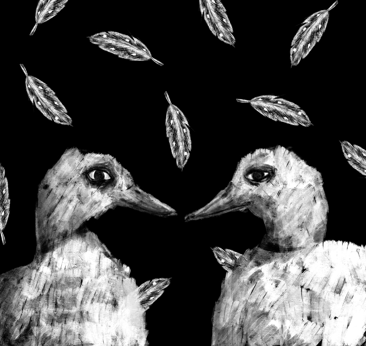 frank_ducks