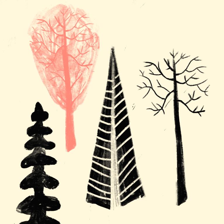 frank's_trees